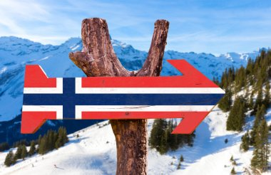Norway Flag wooden sign