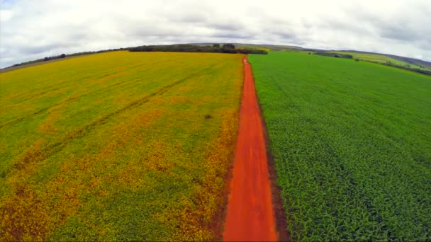 Sojový plantáž v Goias