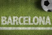 Fotografie zelené fotbalové hřiště