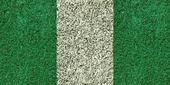 Fotografie Nigeria flag texture