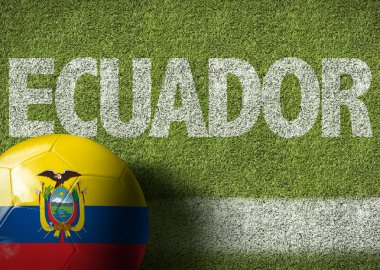 Soccer field with the text Ecuador