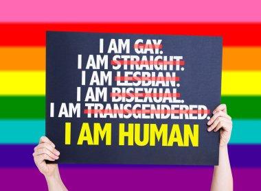 I am Gay, Straight, Lesbian