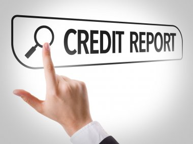 Credit Report written in search bar