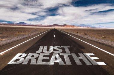 Just Breathe on desert road