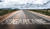 Cukrové třtiny na venkovské silnici
