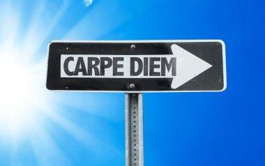Carpe Diem direction sign