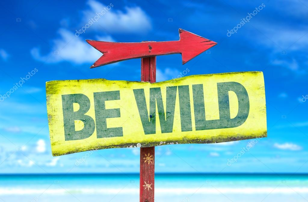 Be Wild wooden sign