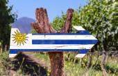 Fotografia Segno di legno bandiera Uruguay