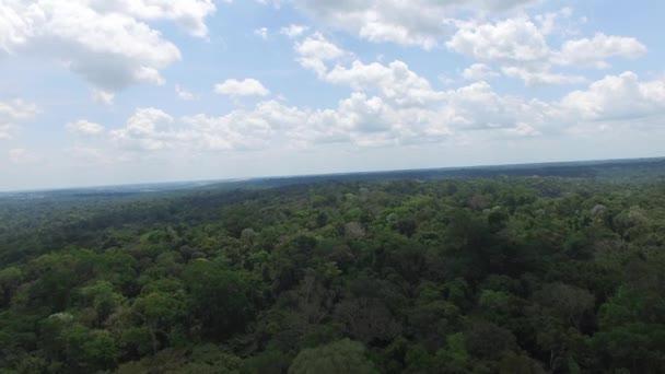 Amazonas, Brazília