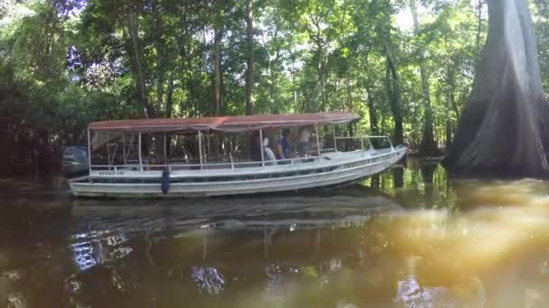 Boat Trip At the Amazon River