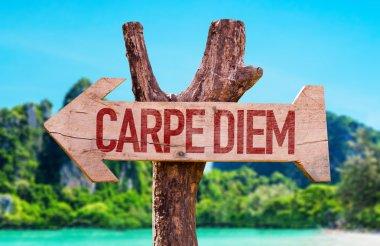 Carpe Diem wooden arrow