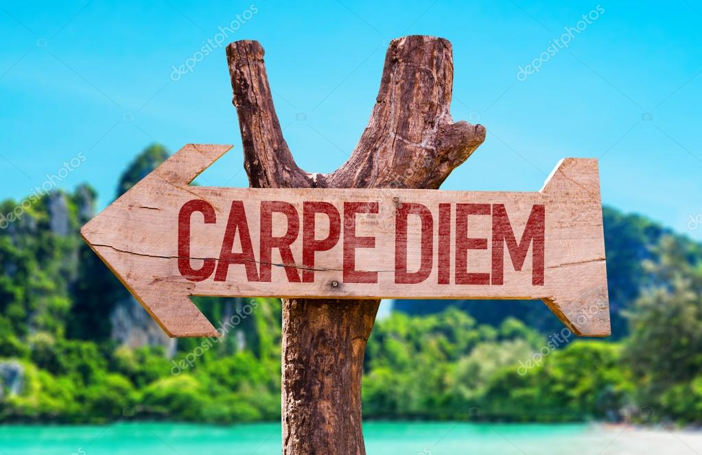 Carpe Diem wooden arrow