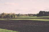 green field with trees in the country - retro, vintage