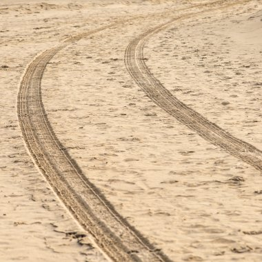 car tyre tracks on the beach sand