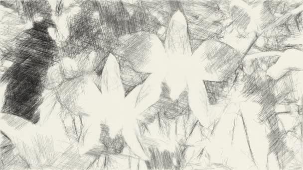 művészet rajz fekete-fehér orchidea virág