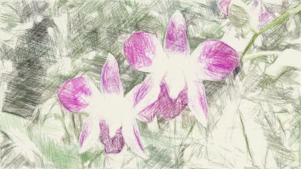 művészet rajz színe orchidea virág háttér