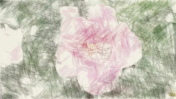 művészet rajz színe hibiszkusz virág