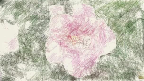 művészet rajz színe hibiszkusz virág a természetben kert