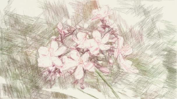 művészet rajz színe jatropha integerrima virág