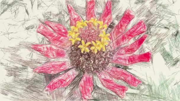 művészet rajz színe piros zinnia virág a természetben kert