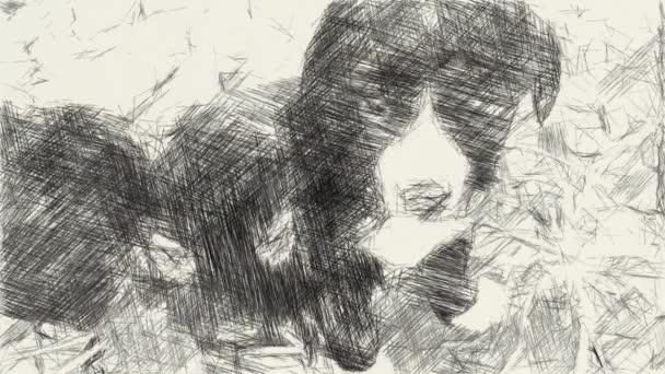 művészet rajz fekete-fehér aranyos baba kutya