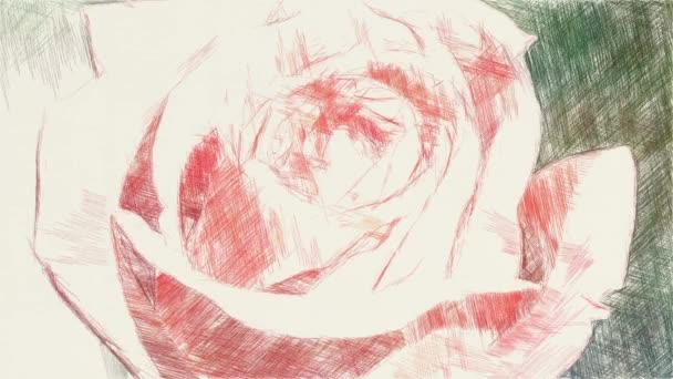 művészet rajz színe rózsaszín rózsa virág