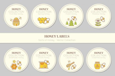 Vector label template design - natural honey collection