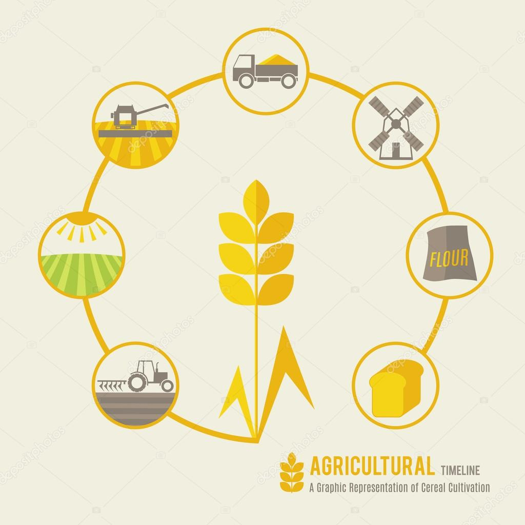 A graphic representation of cereal cultivation