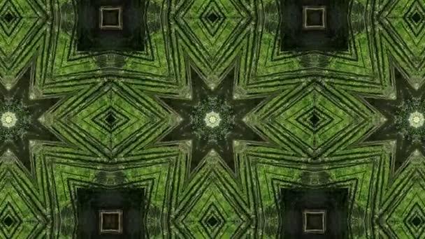 Abstraktní lesní kaleidoskop