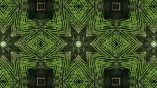 Abstract Forest kaleidoscope