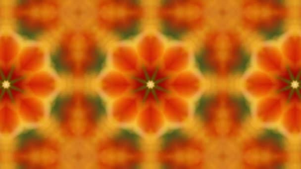Kaleidoszkóp, a narancssárga tulipán