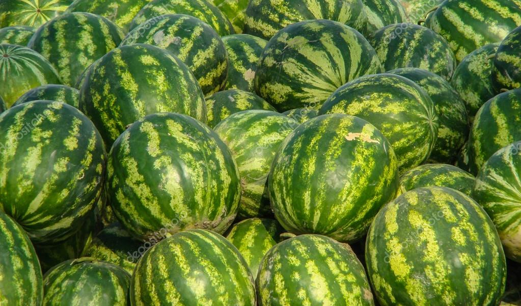 Heap of watermelons for sale