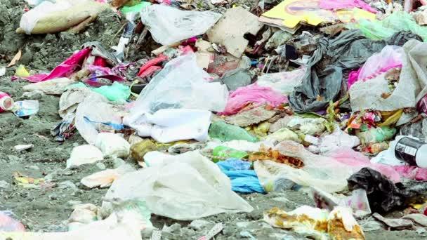garbage dumping in Batumi