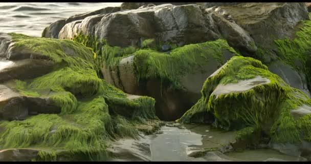 šplouchání mořských vln