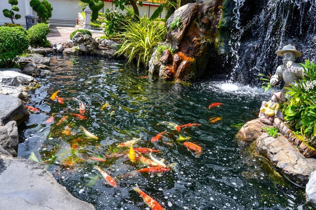 Fotos estanque japones koi pez koi en un estanque for Plantas para estanque peces koi