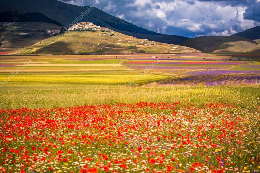 Foto stock Castelluccio di norcia, Immagini Castelluccio di norcia royalty-free | Depositphotos®