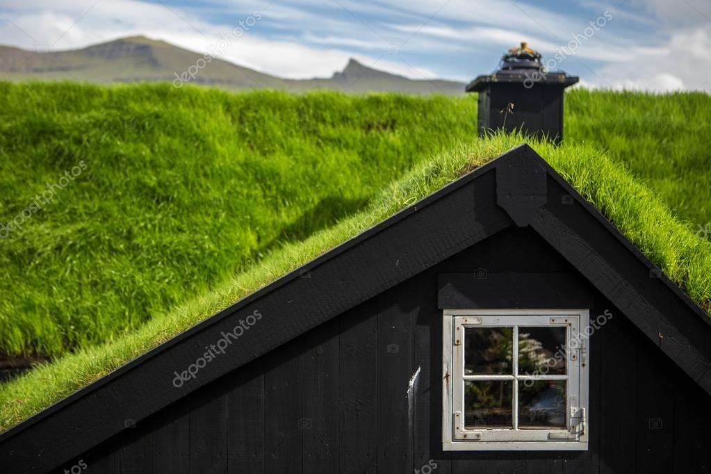 Roofs with grass