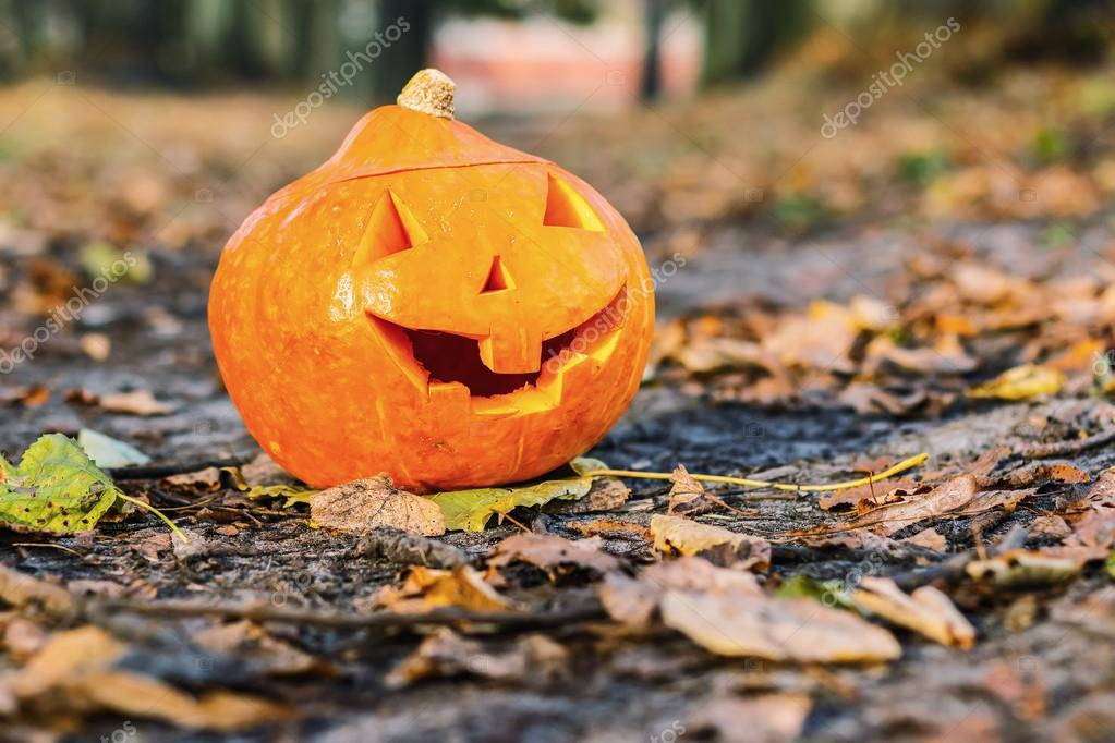 Halloween laughing pumpkin in forest