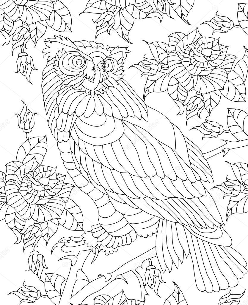 Kuş Boyama Sayfası Stok Vektör Imageplus 117767156