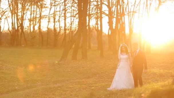 nevěsta ženich jsou procházky v lese na svatbě.