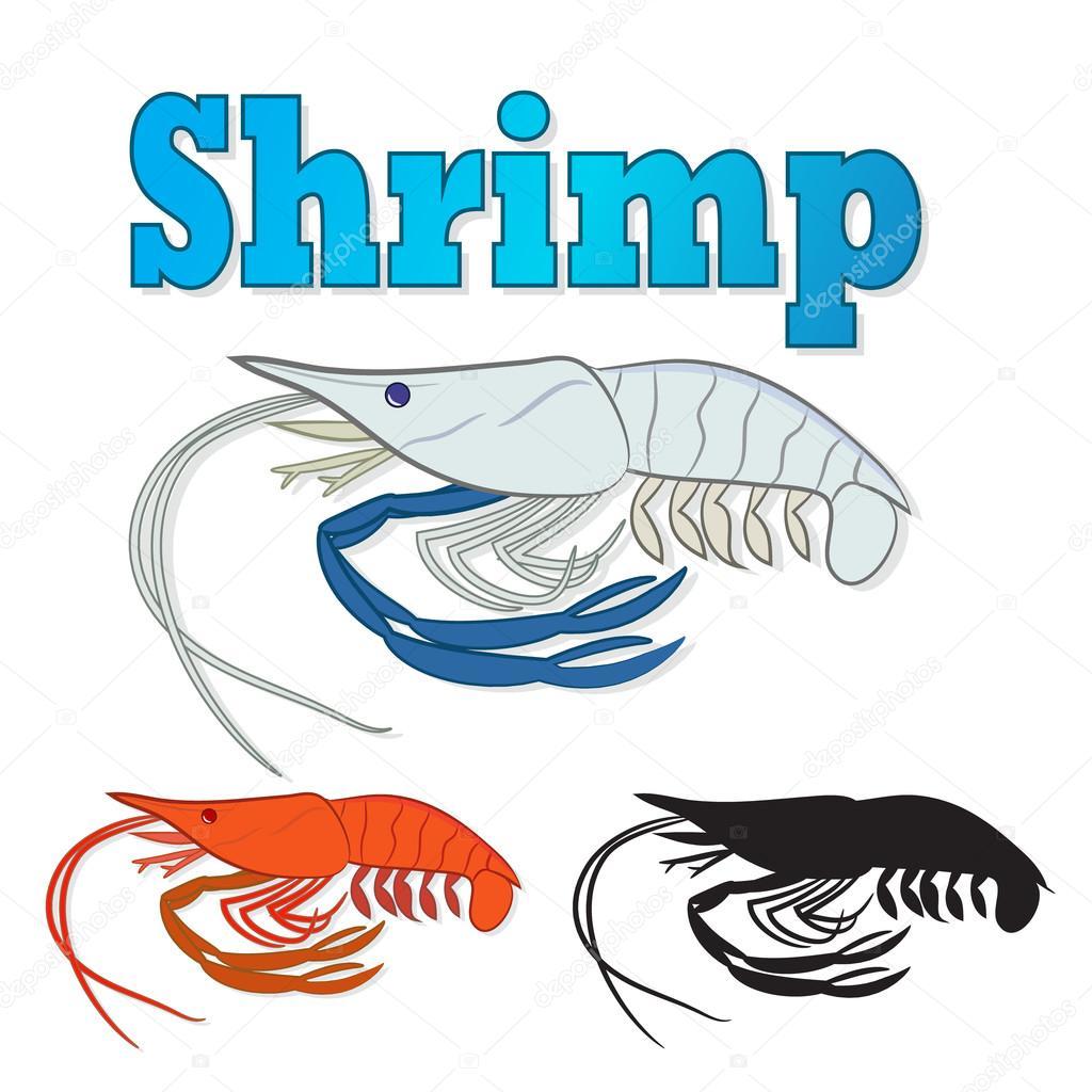 river prawn cooked sea shrimp isolated on white background stock rh depositphotos com Cartoon Shrimp Clip Art Cooked Shrimp Clip Art