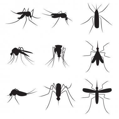 Set of black silhouette carrier mosquitoes isolated on white bac