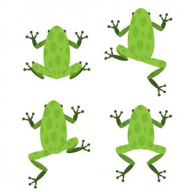 "Картина, постер, плакат, фотообои ""набор зеленой лягушки в плоском стиле с узором "", артикул 96665856"