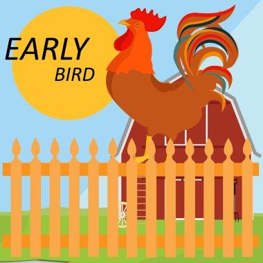 Early bird concept