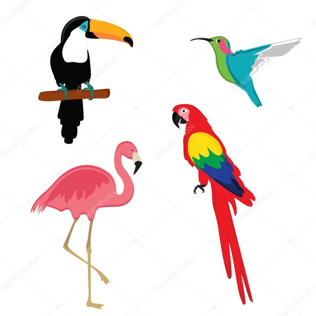 exotic birds vector stock vector viktorijareut 121146924 rh depositphotos com bird vector free download birds victoria au