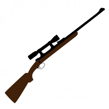 Hunting rifle with sight