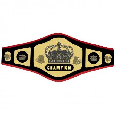 Boxing belt