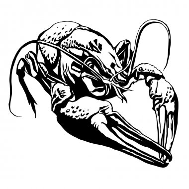 Illustration with a large cancer. Lobster.