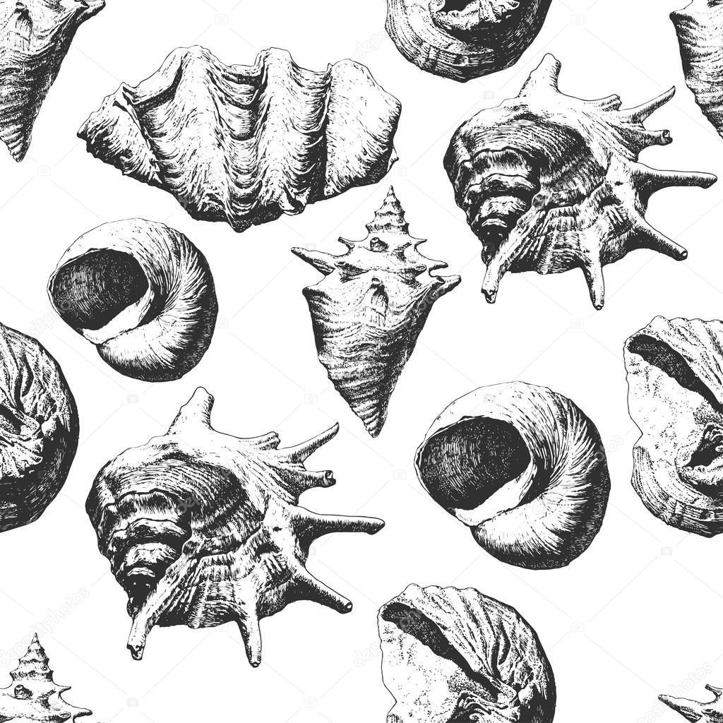Seamless pattern with different shells