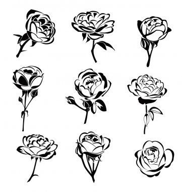 Vector illustration of  roses silhouette stock vector